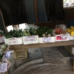 お野菜売り場
